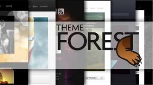 Recensione Themeforest per WordPress