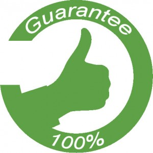 Garanzia Bluehost: soddisfatti o rimborsati
